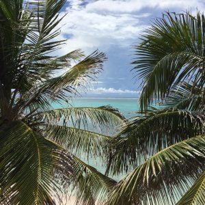 Belize Barrior Reef 3